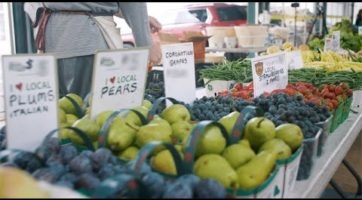 An Ontario Farmers' Market Moment - Shop for the freshness